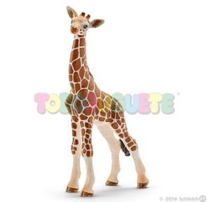 Figura cría de jirafa Schleich